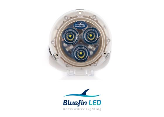 bluefinled piranha p3