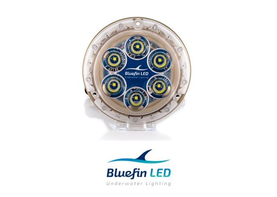 bluefinled piranha p6