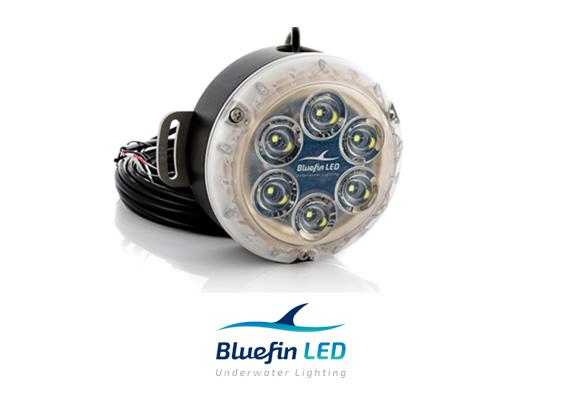bluefinled piranha dock lights