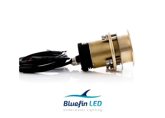 bluefinled underwater light mako